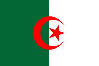 Algeria Flag 3' X 5' Indoor/Parade Flag Set World Countries Flags