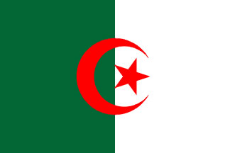 Algeria Flag 4' X 6' Indoor/Parade Flag Set World Countries Flags